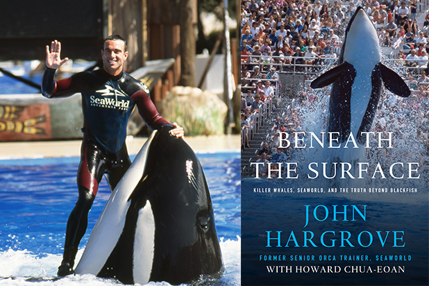John-Hargrove-Sea-World